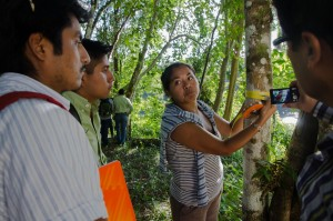 Young forest engineer, Sara Camacho, explains forest carbon measurements to students. Photo credit: Carlos Herrera