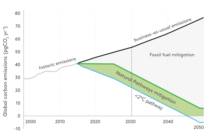Contribution of natural climate solutions (NCS) to stabilizing warming below 2°C. Reproduced with permission from Proceedings of the National Academy of Sciences.