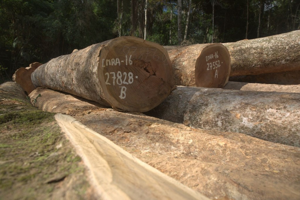 Maderacre Logs